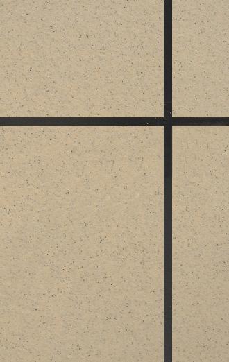 天然单彩真石漆,XYL-DC0003